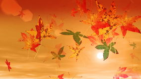 Autumn Leaves Falling (HD-Lijn) royalty-vrije illustratie