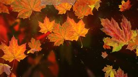 Autumn leaves falling in slow motion and sun shining through fall leaves. Beautiful landscape background stock video footage