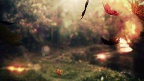 Autumn leaves falling