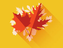 Autumn leaves. Flat leaves with long shadow. Royalty Free Stock Image