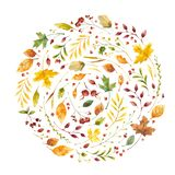 Autumn leaves flat vector decorative square frame. Vintage yellow foliage with red guelder berries. Fall season floral border with