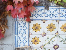 Autumn leaves with floral tiles. Autumn leaves pending on a floral decorated tiles wall Stock Photography