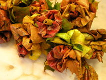 Autumn leaves flowers Stock Photography