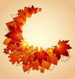Autumn leaves. Flying autumn leaves background with space for text Stock Image
