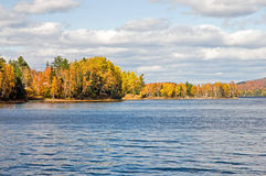 Autumn leaves forest shoreline. Colorful fall or autumn leaves on the forested shoreline of a rural lake in Maine (USA Stock Photo