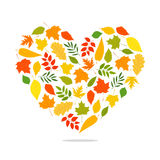 Autumn leaves in the form of a large heart Royalty Free Stock Photos