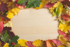 Autumn leaves forming a round frame Stock Photos