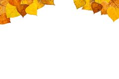 Autumn leaves frame. On white background Stock Photography