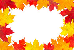 Autumn leaves frame. Over white with copy space Royalty Free Stock Photos