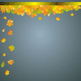 Autumn leaves frame Royalty Free Stock Image