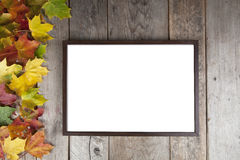 Autumn leaves with frame Royalty Free Stock Photography
