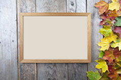 Autumn leaves with frame Stock Photos