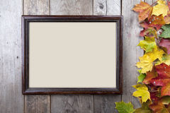 Autumn leaves with frame Stock Image