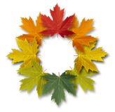 Autumn-Leaves-Frame Royalty Free Stock Photos