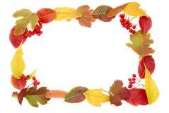 Autumn leaves frame. Isolated background decor Stock Images