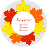 Autumn Leaves Frame Photographie stock