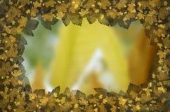 Autumn Leaves Frame Photo stock
