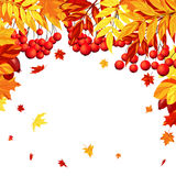Autumn Leaves Frame Image libre de droits