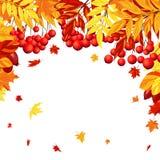 Autumn Leaves Frame Imagen de archivo libre de regalías