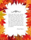 Autumn leaves frame. For your design Royalty Free Stock Photo