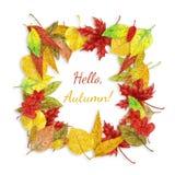 Autumn Leaves Frame Royalty-vrije Stock Fotografie