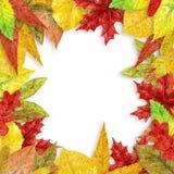 Autumn Leaves Frame Image libre de droits