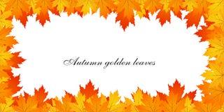 Autumn Leaves Frame Photos stock