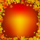 Autumn leaves frame background Royalty Free Stock Images