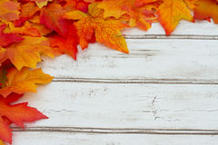 Autumn Leaves Frame Background Stock Images