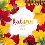 Autumn leaves frame background. Illustration of Autumn leaves frame background Stock Illustration