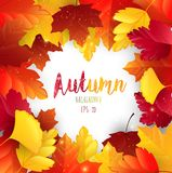Autumn leaves frame background. Illustration of Autumn leaves frame background Vector Illustration