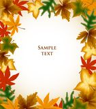 Autumn leaves frame background. Vector Stock Image