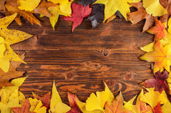 Autumn leaves frame background Royalty Free Stock Photos