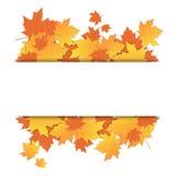 Autumn Leaves Frame On Banner con temporada de otoño colorida del ornamento del arce del espacio de la copia Imagen de archivo