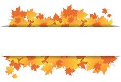 Autumn Leaves Frame On Banner con temporada de otoño colorida del ornamento del arce del espacio de la copia Imagenes de archivo