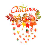 Autumn leaves frame beautiful Royalty Free Stock Images