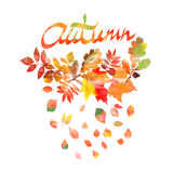 Autumn leaves frame beautiful watercolor Stock Image