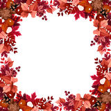 Autumn leaves frame. Frame with autumn leaves, berries, cones and chestnuts Stock Photo