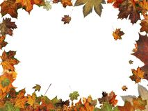 Autumn leaves frame border illustration isolated Royalty Free Stock Photos