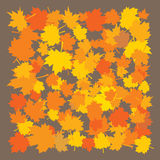 Autumn leaves frame concept Stock Photography