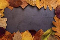 Autumn Leaves Frame on Dark Stone Background. Autumn Concept Wallpaper. Royalty Free Stock Photos