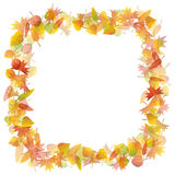 Autumn leaves frame illustration Stock Photos