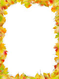 Autumn leaves frame isolated on white. EPS 10 vector Royalty Free Stock Photos