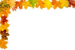 Autumn Leaves Frame Stock Photo