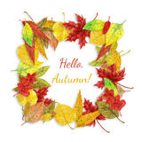 Autumn leaves frame. Frame made of various autumn leaves painted with watercolors on white background with lettering Royalty Free Stock Photography