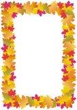 Autumn leaves frame (maple). Autumn maple leaves frame - illustration stock illustration
