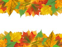 Autumn leaves frame over white Royalty Free Stock Images