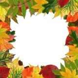 Autumn leaves frame Royalty Free Stock Photos