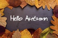 Autumn Leaves Frame på mörk stenbakgrund Hello Autumn Concept Wallpaper Arkivbild
