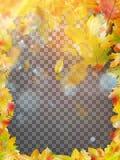 Autumn Leaves Frame Vecteur d'ENV 10 Photographie stock libre de droits